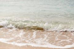 Slut upp havsv?gor med f?rgst?nk p? sandstranden close upp fotografering för bildbyråer