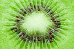 Slut upp kiwi Arkivfoton