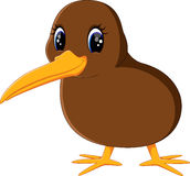 Slut upp kiwifågel Royaltyfria Bilder
