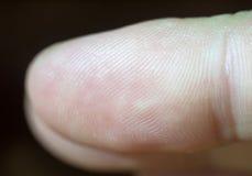 Slut upp makrodetaljen av en fingerspets och dess tryck Royaltyfri Foto