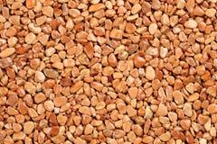 Slut upp naturlig stenmatta som färgas i olika skuggor och toner av sandig brunt och beige Beläggning för dekorativ sten slip royaltyfri fotografi