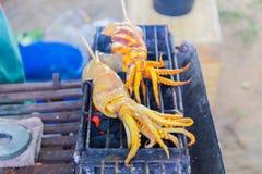 Slut upp nya den grillade tioarmad bläckfiskgrillfesten Royaltyfri Foto