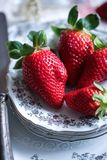 Slut upp på en röd härlig jordgubbe Arkivfoto