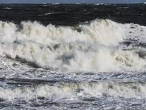 Slut upp på kust- vawe Arkivbilder