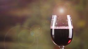 Slut upp rött vin i exponeringsglas med bristning av bubblaultrarapid Ett vinexponeringsglas stock video