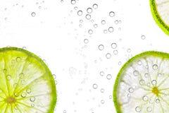 Slut upp skivad ny limefrukt, isolerat royaltyfri foto