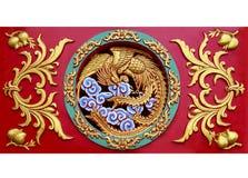Slut upp sned phoenix på väggen Royaltyfria Foton