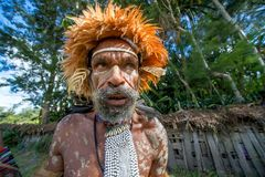 Slut upp ståenden av den Dugum Dani mannen Royaltyfri Fotografi