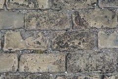 Slut upp stentrottoarsikt uppifrån Bästa sikt av stentrottoar, textur cobblestoned granittrottoar f?r bakgrund royaltyfria bilder