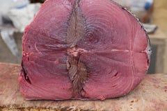 Slut upp tarmar av den cutted tonfiskfisken fotografering för bildbyråer