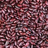 Slut upp texturbakgrund för röda bönor Royaltyfria Foton