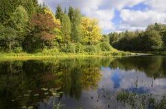 Slutet av Augusti på floden Mezha Kostroma region arkivbilder