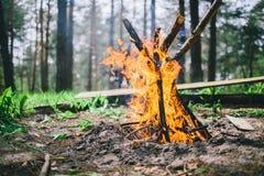 Slutet av flammande lägereld bränner till kol upp i i en skogglänta Royaltyfri Fotografi