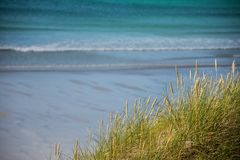 Slutet av havsgräs i sanddyerna med blått vinkar upp på en sandig strand i bakgrunden royaltyfria foton