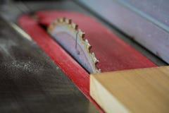 Slutet av såg upp bitande trä för bladet på tabellsågen Royaltyfri Bild