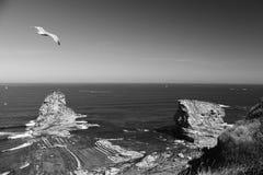 Slutet av seagullen som flyger över den enorma klippan, vaggar upp av deuxjumeaux i Atlantic Ocean med vågor i svartvitt Royaltyfri Foto