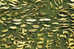 Slutet av uttorkningsnittet plocka svamp upp på netto torkbakgrund i trädgård Högen av naturlig torkad skivad sopp plocka svamp f Arkivbild