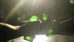 Slutet av vänner som tar flaskor av ölet, klirrar upp till och med solen med linssignalljuseffekter i kafé, medan solen är stock video