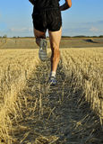 Slutet lägger benen på ryggen upp, och skor av sportmannen som kör baksida för det arga landet, beskådar perspektiv Arkivfoto