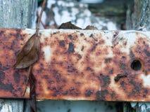 Slutet rostade upp textur för trädgård för port för vit metall tillbaka Royaltyfri Fotografi