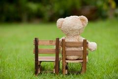 Slutet upp älskvärd nallebjörn sitter på trästol, begrepp om lo Fotografering för Bildbyråer
