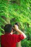 Slutet upp arbete för kamera för håll för Aisan kinesiskt manfotograf i natur sköt lönn royaltyfria foton