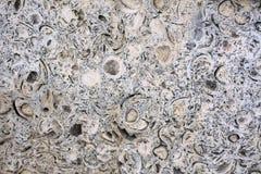 Slutet upp bakgrundstextur av klipplager av riden ut granitklippaerosion är en lång tid royaltyfri bild