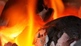 Slutet upp brand på kol växer med suddigt arkivfilmer