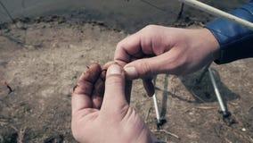 Slutet upp fiskaresteknålfiske avmaskar på kroken för att fiska som är utomhus- stock video