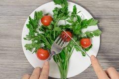 Slutet upp fotoet för den bästa sikten av händer för kvinna` s klippte den körsbärsröda tomaten på pl arkivfoton