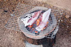 Slutet upp ny tioarmad bläckfiskgrillfest grillade på kolugnen Arkivfoton