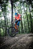 Sluttande cykla för berg Royaltyfri Foto