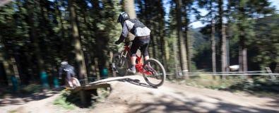 Sluttande Mountainbiker Fotografering för Bildbyråer