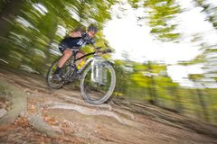 Sluttande mountainbiking som är offroad till och med skog royaltyfri fotografi