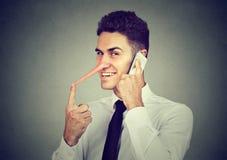 Sluwe jonge mens met lange neus die op mobiele telefoon op grijze muurachtergrond spreken Leugenaarconcept royalty-vrije stock fotografie