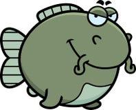Sly Cartoon Catfish Stock Images