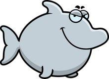 Sly Cartoon Dolphin Stock Photography