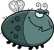Sly Cartoon Fly Stock Images