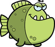 Sly Cartoon Piranha Stock Photos