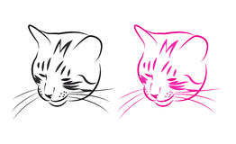 Sly cat. Muzzle sly cat, black and pink sketch. Vector illustration Stock Photography