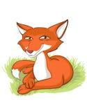 Sly fox Stock Photo