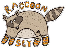 Sly raccoon Stock Photography