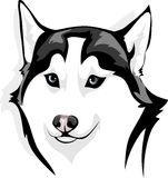 Sly wolf. Vector image of head of sly wolf Stock Photography