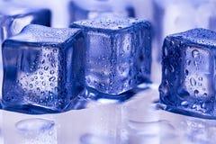 Smältande genomskinliga iskuber på exponeringsglas Royaltyfri Bild