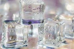 Smältande genomskinliga iskuber på exponeringsglas Royaltyfri Foto