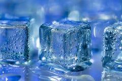 Smältande genomskinliga iskuber på exponeringsglas Arkivbilder