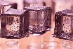 Smältande genomskinliga iskuber på vått exponeringsglas Arkivbilder