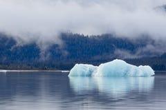 Smältande isberg i Mendenhall sjön Arkivbild