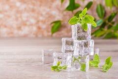 Smältande iskuber och mintkaramellsidor Royaltyfri Bild