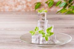 Smältande iskuber och mintkaramellsidor på ett tefat Royaltyfri Foto